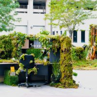 Green office environments linked with hi...